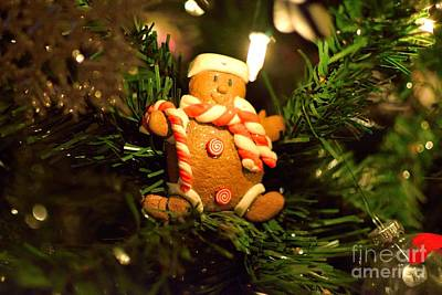 Modern Sophistication Beaches And Waves - Gingerbread Snowman by Derry Murphy