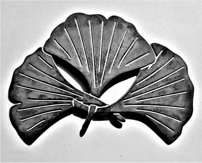 Photograph - Ginkgo Leaf In B W by Rob Hans