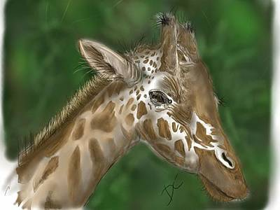 Digital Art - Giraffe by Darren Cannell