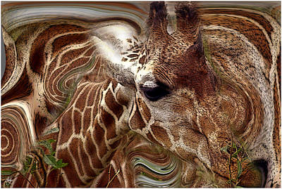 Giraffe Dreams No. 1 Art Print