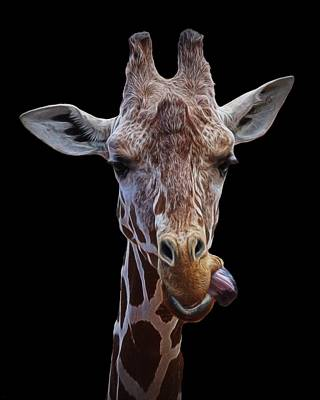 Digital Art - Giraffe Face by Ernie Echols