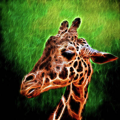 Photograph - Giraffe Fractal by Judy Vincent