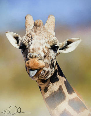 Photograph - Giraffe Giving The Raspberry by Gloria Anderson