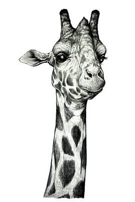 Giraffe Art Print by Heidi Kriel