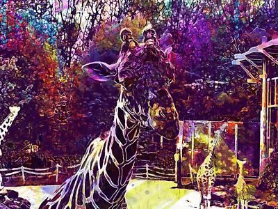 Digital Art - Giraffe Mammal Zoo Males  by PixBreak Art