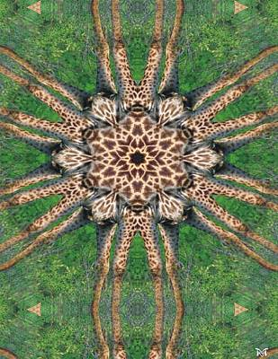 Digital Art - Giraffe Mandala II by Maria Watt