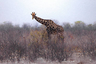Digital Art - Giraffe Namibia by Ernie Echols