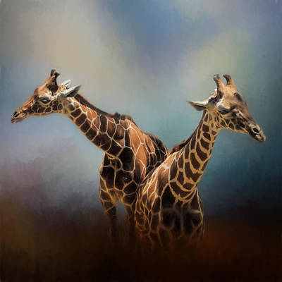 Photograph - Giraffe Pair by David and Carol Kelly