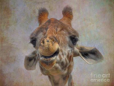 Art Print featuring the photograph Giraffe by Savannah Gibbs