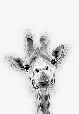 Shower Digital Art - Giraffe by Taylan Apukovska