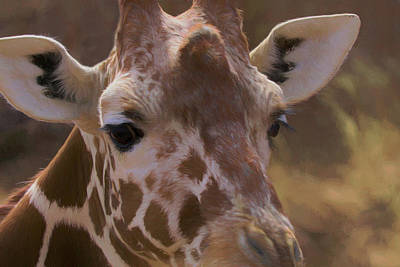 Digital Art - Giraffe Upclose by Ernie Echols