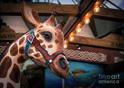 Photograph - Giraffecarousel by Lisa L Silva