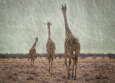 Digital Art - Giraffes In Namibia by Ernie Echols