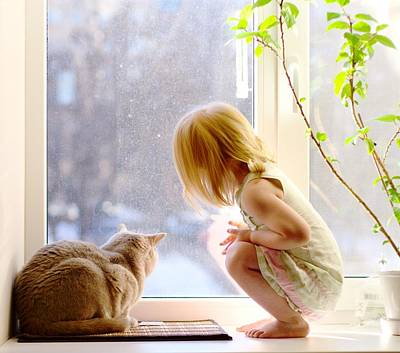 Photograph - Girl And Cat Looking Out Of The Window. Best Friends. by Yana Shonbina