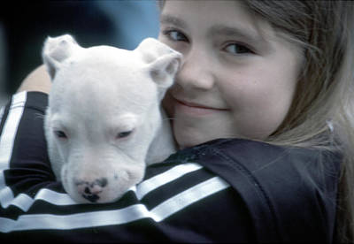 Photograph - Girl And Puppy by Samuel M Purvis III