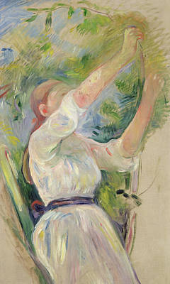 Ponytail Painting - Girl Gathering Cherries by Berthe Morisot