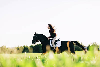 Photograph - Girl Storming Through The Field On A Bay Horse by Michal Bednarek