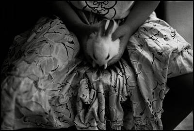Photograph - Girl With Bunny by Werner Hammerstingl