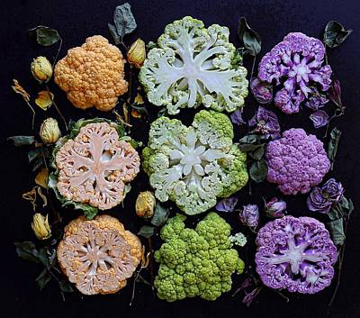 Photograph - Give Them Cauliflowers by Sarah Phillips