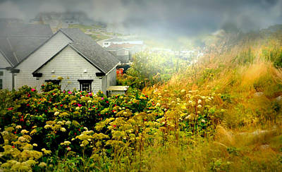 Photograph - Peggy's Cottage by Diana Angstadt