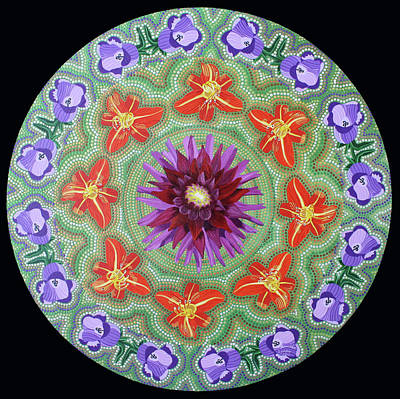 Painting - Giverny Mandala by Amanda Lynne