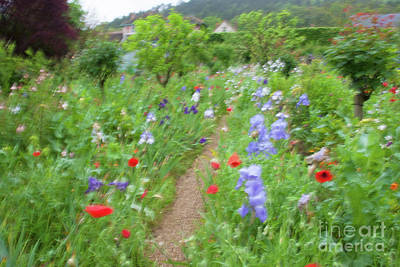 Photograph - Giverny Monet's Garden by Jean-Luc Baron