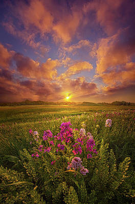 Photograph - Giving A Voice To The Dawn by Phil Koch