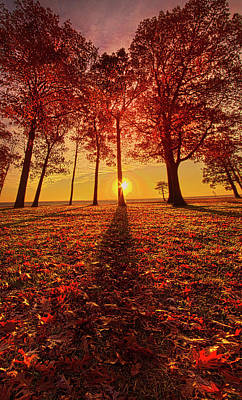 Photograph - Giving Thanks by Phil Koch