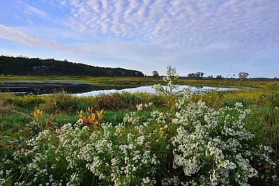Photograph - Glacial Park Pond In Lost Valley by Ray Mathis