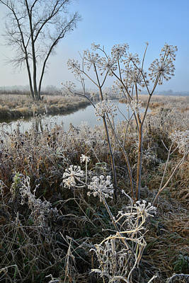 Photograph - Glacial Park's Nippersink Creek On Frosty Morning by Ray Mathis