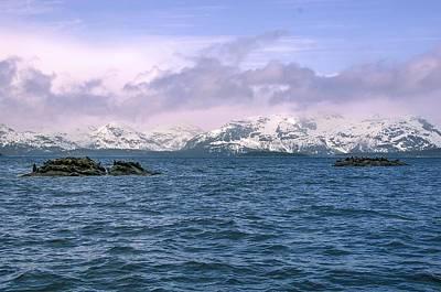Photograph - Glacier Bay Landscape Alaska by NaturesPix