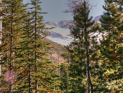 Photograph - Glacier National Park - 4 by David Bearden