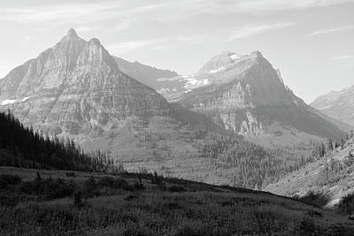 Photograph - Glacier National Park Fireweed Slope Black And White by Bruce Gourley