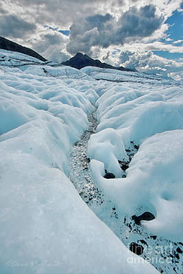 Photograph - Glacier Stream by David Arment