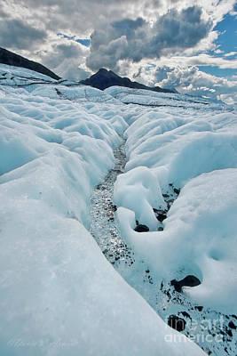 Photograph - Glacier Stream by David Arment