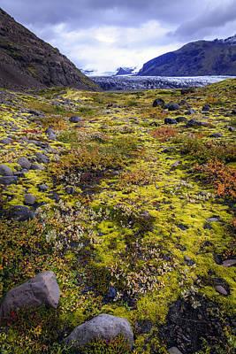 Photograph - Glacier Valley by Alexey Stiop