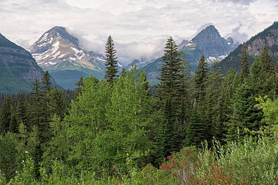 Photograph - Glacier View by Morris McClung