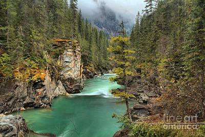 Photograph - Glacier Waters Through The Forest by Adam Jewell