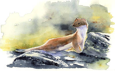 Painting - Glacier Weasel by Marsha Karle