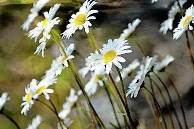 Photograph - Glacier Wildflowers by Marty Koch