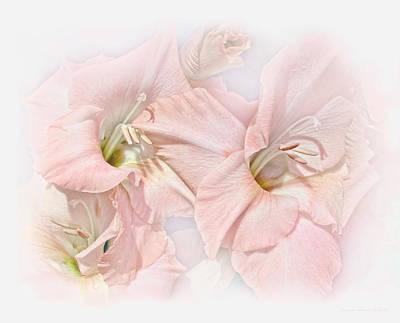 Photograph - Gladiola Flowers Pink Pastel by Jennie Marie Schell
