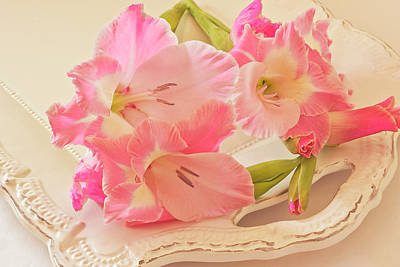 Gladiola Photograph - Gladiolas In Pink by Sandra Foster