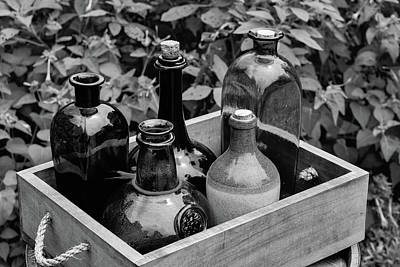 Photograph - Glass Bottles In The Garden by Nicole Lloyd
