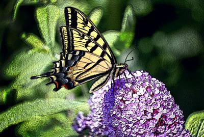 Glass Butterfly Original by James Steele
