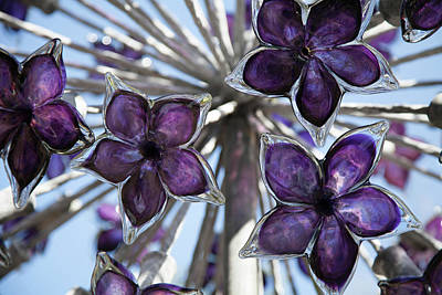 Photograph - Glass Flowers by Linda Freebury