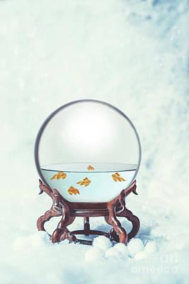 Gold Fish Photograph - Glass Globe With Goldfish by Amanda Elwell