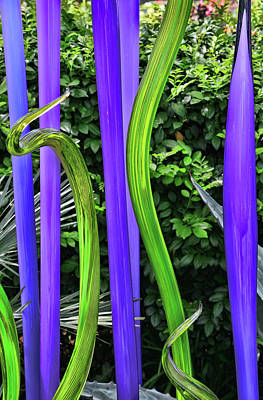 Photograph - Glass House Fiori # 2 by Allen Beatty
