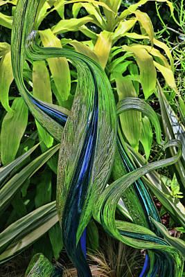 Photograph - Glass House Fiori # 4 by Allen Beatty