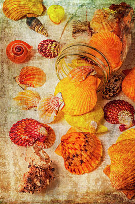 Photograph - Glass Jar With Seashells by Garry Gay