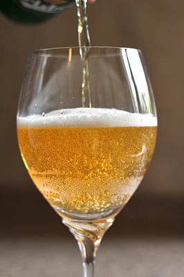 Beer Royalty-Free and Rights-Managed Images - Glass of lager by Louise Heusinkveld